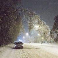 Неправильный ноябрь / последствия ледяного дождя :: DimCo ©