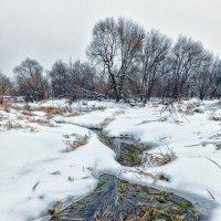 Поздняя осень...или ранняя зима :: Николай Андреев