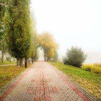 Утро туманное................. :: Александр Селезнев
