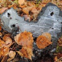 Ледяное сердце :: Елена Якушина