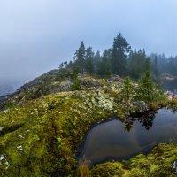 Озерца на гранитном острове :: Фёдор. Лашков