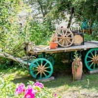 Красавица с зелеными ... :: Виктор Орехов