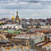 Питерские крыши. :: Edward J.Berelet