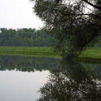 Дворянское гнездо :: Игорь Юсов