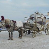 Лошадка с каретой. Катание зимой. :: Татьяна