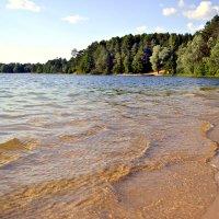 Лесное озеро :: Natalia Alekseeva