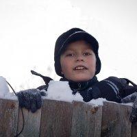 На заборе :: Евгений
