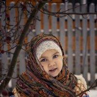 деревенские морозы :: Тася Тыжфотографиня