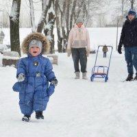 просто радуюсь снежному деньку :: Наталия П