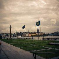 * :: Raman Stepanov