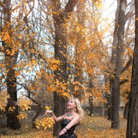 Осень на ветках деревьев, в воздухе и на земле. :: Райская птица Бородина