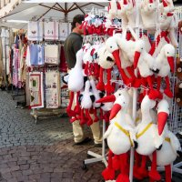 Аисты-пернатый символ Страсбурга :: Надежда