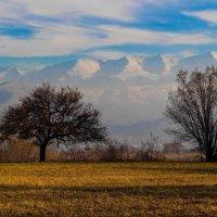 Горы Казахстана :: Евгения Беркина