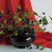 Декоративно-ягодный букет :: Татьяна Смоляниченко