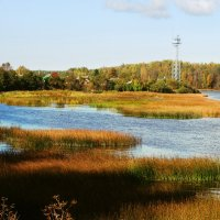 река осенью :: linnud