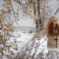 Снежная красота :: Наталья