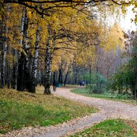 Осень, осень, лес остыл и листья сбросил... :: Олег Чернов