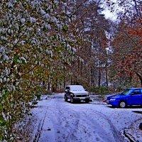 Первый снег :: Юрий Владимирович 34