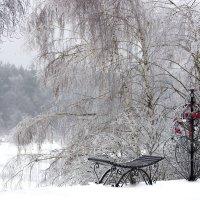 Хрустальная зима :: Андрей Костров