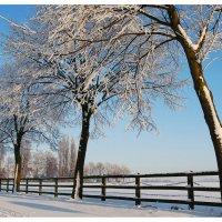 Зима :: Евгений Сладкевич