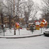 В зимнем парке :: Svetlana Lyaxovich
