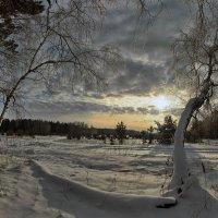 Только-только рассвело...утро зимнее пришло :: Сергей Жуков