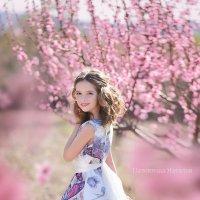 В персиковом саду :: Наталья Паленичка