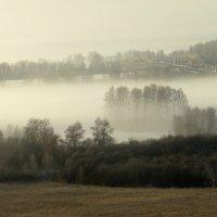 Осенний туман. :: nadyasilyuk Вознюк
