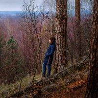 В заколдованном диком лесу :: Вера Сафонова