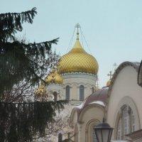 Воскресенский Новодевичий монастырь :: Елена Павлова (Смолова)