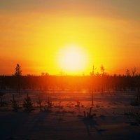 Закат солнца в полдень :: Ася Зайцева