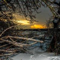 зимний закат :: Дмитрий Беляков