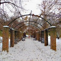 Вот и зима ... :: татьяна петракова
