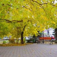 Осенние краски :: Виктор Шандыбин