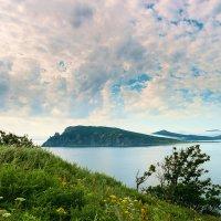 Залив Владимира. :: Поток