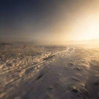 Поутру зимой проснувшись :: Сергей Жуков