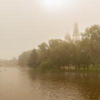 Туман :: Ольга Федорова