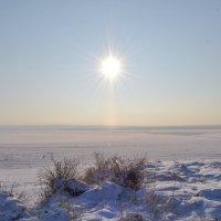 морозный ноябрь :: сергей
