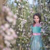 Яблоневый сад :: Наталья Паленичка
