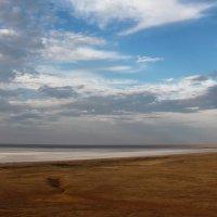 За горизонтом Казахстан :: Dr. Olver  ( ОлегЪ )