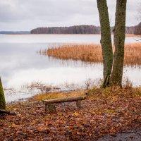 Осень на Виштынецком озере :: Игорь Вишняков