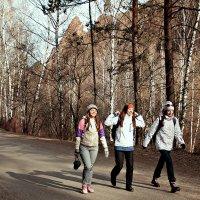 Стайка девушек идущих на Столбы :: Екатерина Торганская