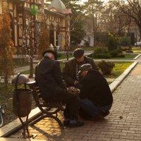 Сладкий ноябрь :: Александра