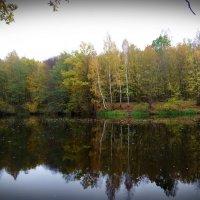 Хмурая осень.. :: Антонина Гугаева
