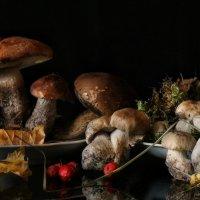 Снова про грибочки :: Ирина Сивовол