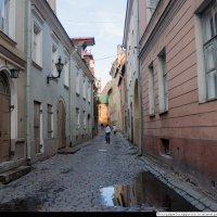 После дождя. :: Игорь Ринкевич
