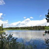 На озере :: Наталья