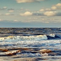 Азовское море :: Vladimir Lisunov