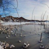 Зимнее озеро. :: Sven Rok
