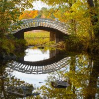 Мост в Парке Монрепо :: Элла Ш.